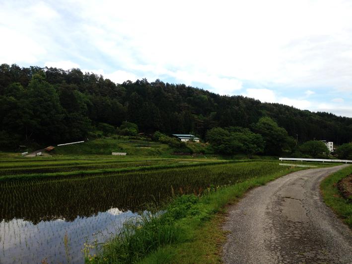 この時期の農村。