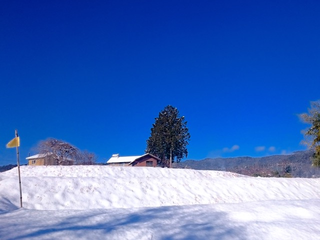 雪満載で。
