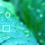 アトリエタムロが考える庭づくり5つのポイント