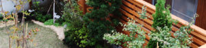 目隠しする庭のリフォーム