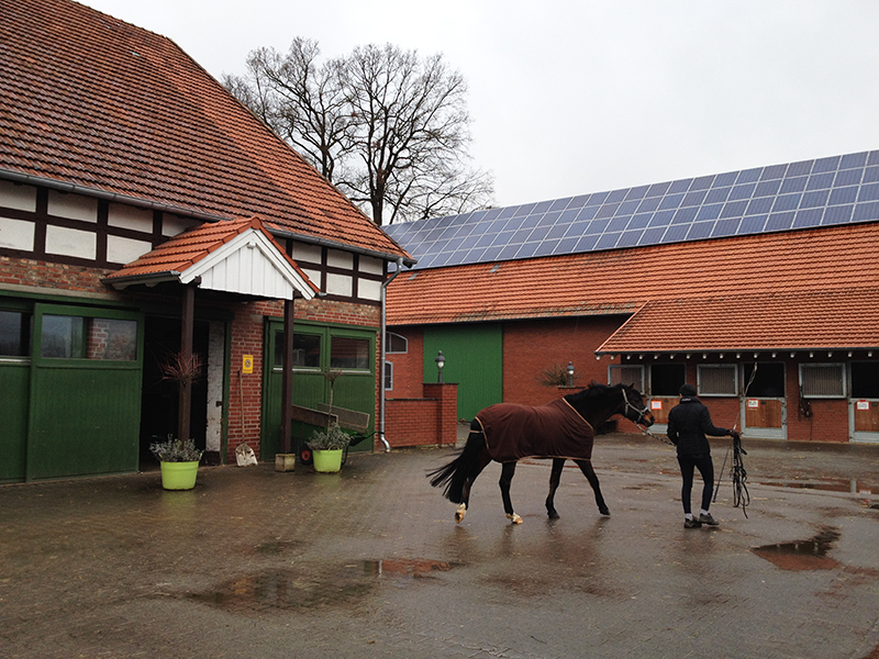 歴史あるドイツの厩舎