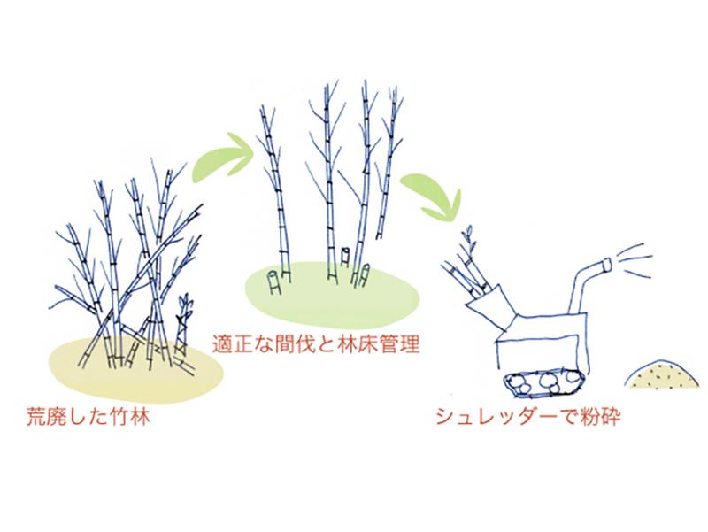 竹林整備の流れ