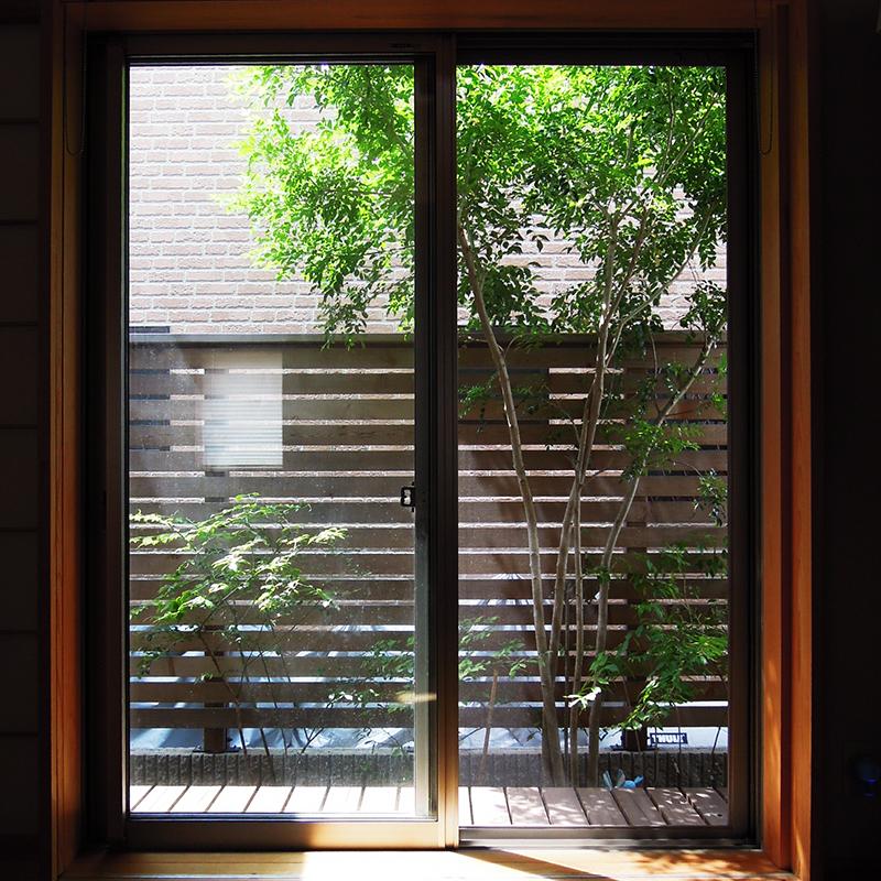 室内から見たフェンスと庭木